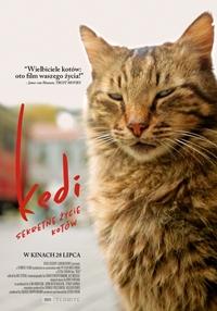Plakat filmu Kedi - sekretne życie kotów