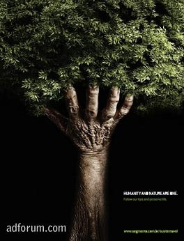 Pozna gospodarzem wystawy act responsible aktualno ci info - Tell tree dying order save ...