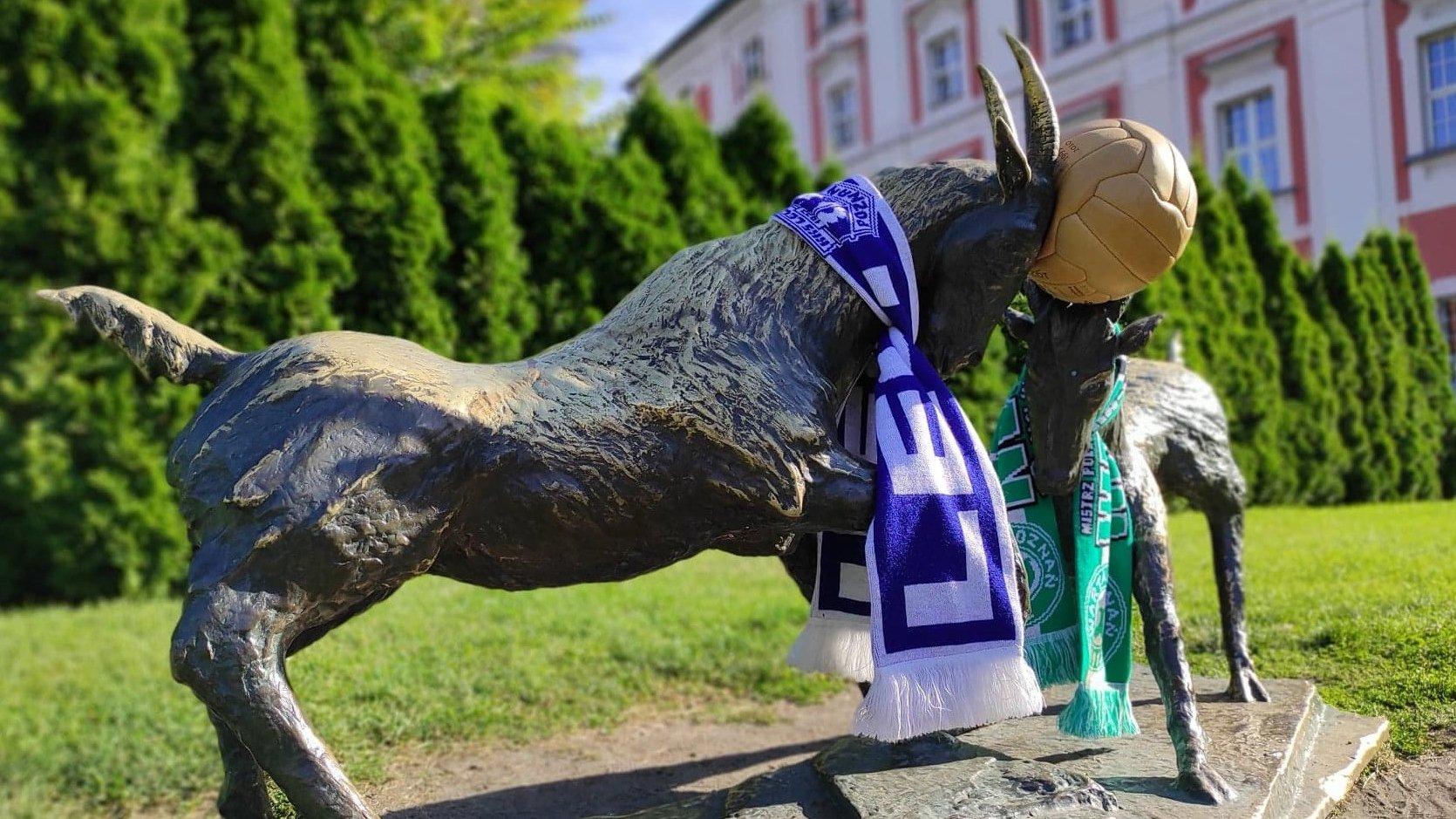Koziołki w parku Chopina ubrane w szaliki Lecha i Warty. Pomiędzy rogami stylizowana na historyczną piłka - grafika artykułu