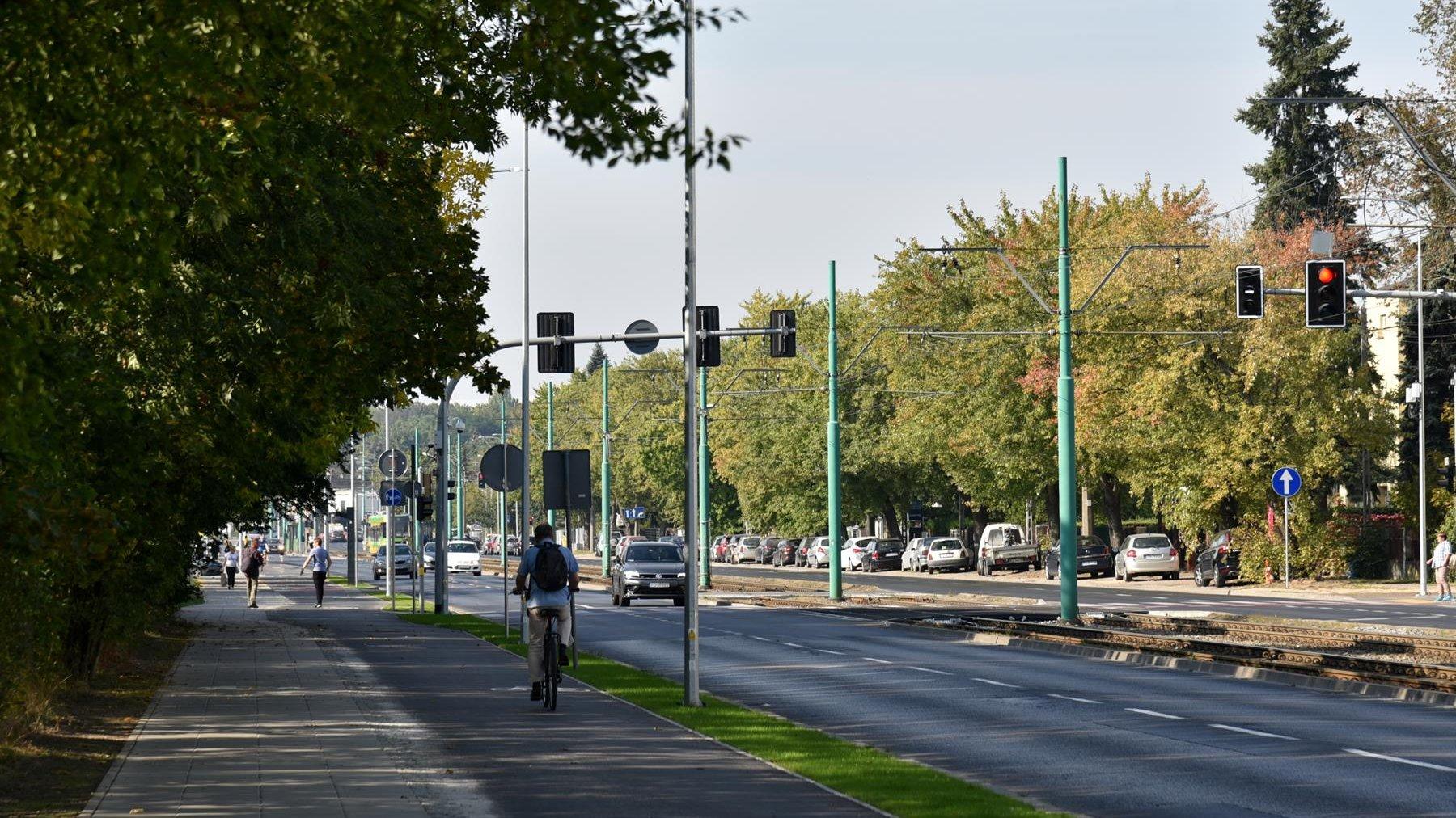 Nowa droga rowerowa wzdłuż ul. Grunwaldzkiej. Po lewej stronie drzewa, po prawej - ulica i tory tramwajowe - grafika artykułu
