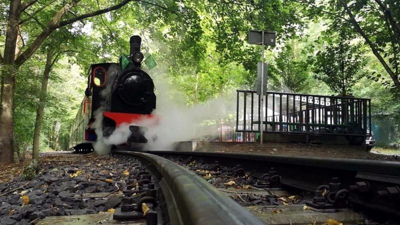 parowóz Lowa na stacji przy Nowym Zoo - grafika artykułu