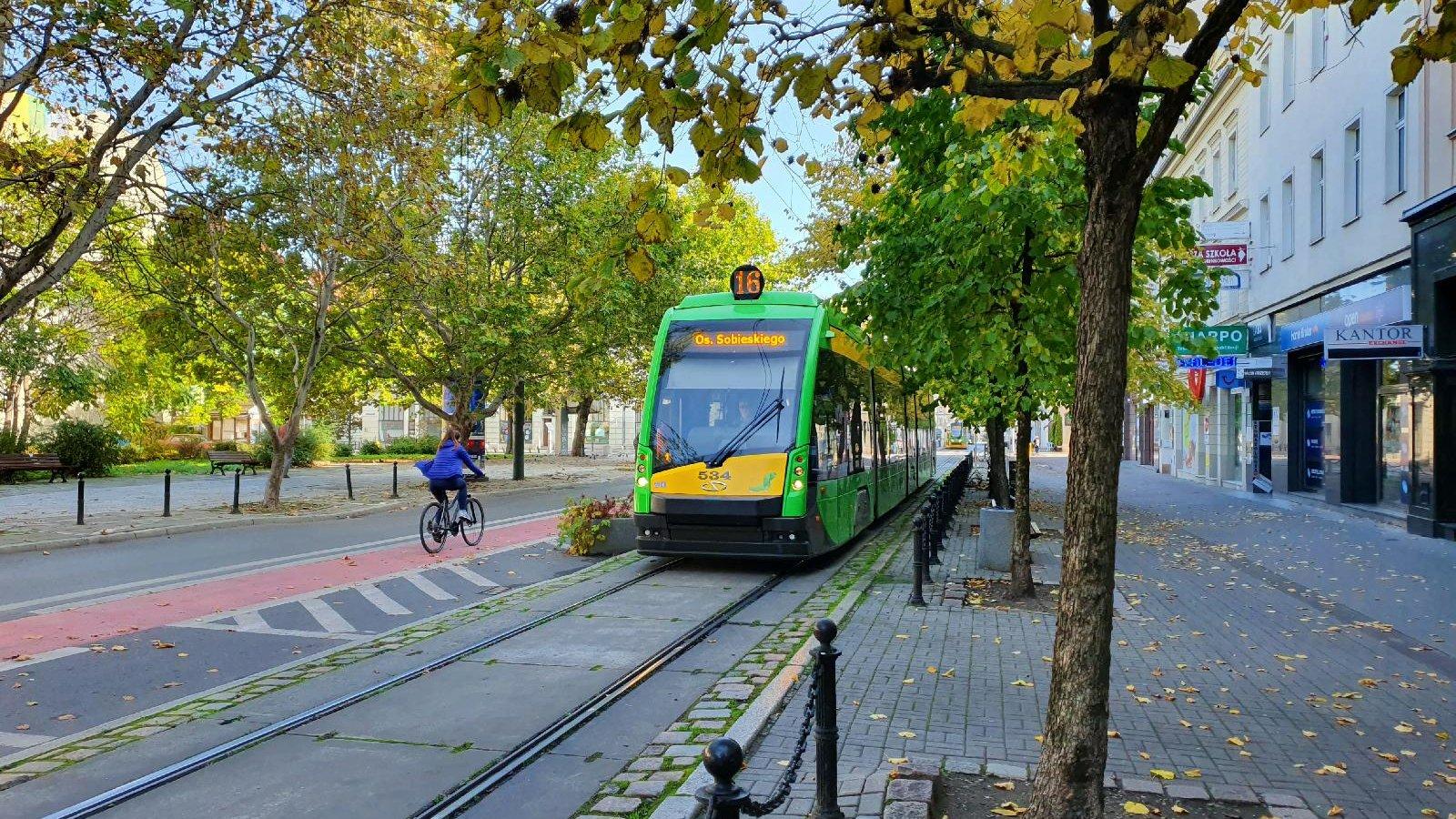 Tramwaj i rowerzystka na zadrzewionej ul. 27 grudnia - grafika artykułu