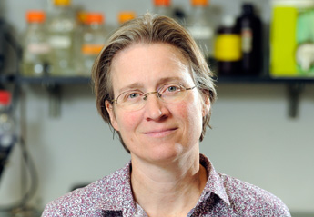 Prof. Rachel Green (USA)
