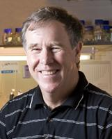 Prof. Timothy Noakes (RPA)