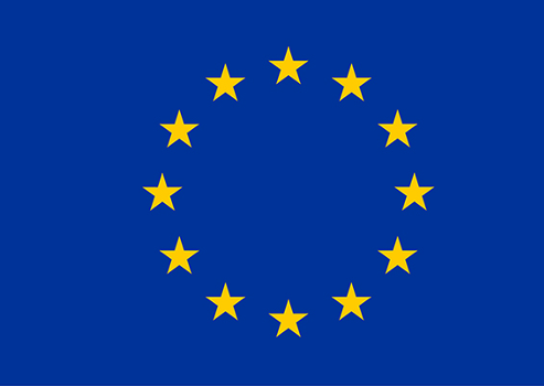https://europa.eu/european-union/sites/europaeu/files/docs/body/flag_yellow_low.jpg